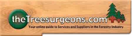 Tree Surgeons Wales